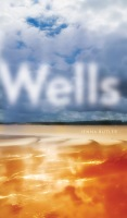 Wells Cover